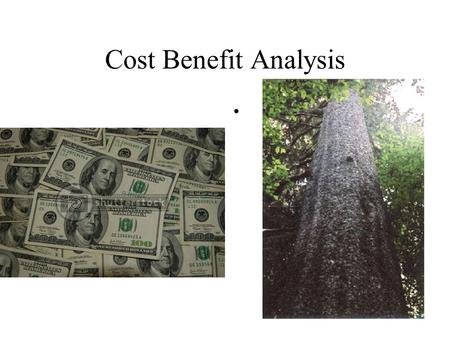 Cost Benefit Analysis Executive Order 12291 RIA for all new regulations Benefits > Costs Office of Information and Regulatory Affairs (OIRA) in OMB 1984-