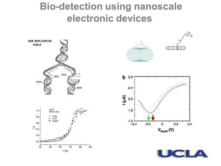 Bio-detection using nanoscale electronic devices.