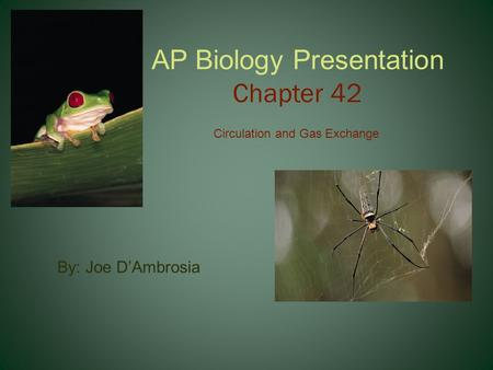 AP Biology Presentation Chapter 42