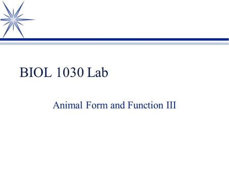 BIOL 1030 Lab Animal Form and Function III. Lab 5 Review 1 Identify the structures indicated.