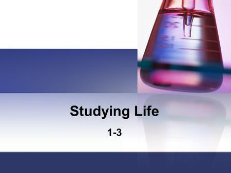 Studying Life 1-3.