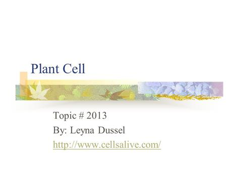 Plant Cell Topic # 2013 By: Leyna Dussel