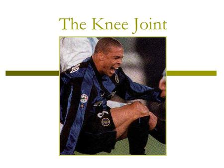 The Knee Joint.  Hinge joint?  Double-condyloid joint Flexion and Extension Internal and External Rotation  The locking of the knee into full extension.