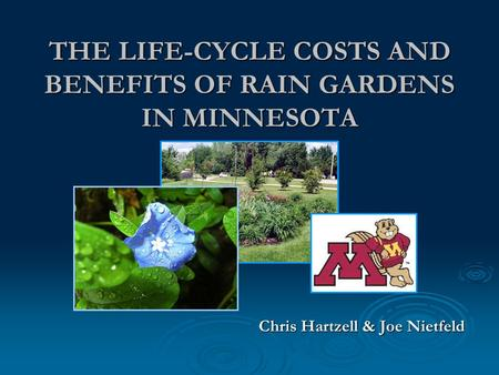 THE LIFE-CYCLE COSTS AND BENEFITS OF RAIN GARDENS IN MINNESOTA Chris Hartzell & Joe Nietfeld.