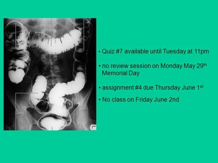 Quiz #7 available until Tuesday at 11pm no review session on Monday May 29 th Memorial Day assignment #4 due Thursday June 1 st No class on Friday June.