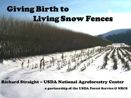 10/5/05 2005 Living Snowfence Workshop - Spokane, WA 1 Giving Birth to Living Snow Fences Richard Straight – USDA National Agroforestry Center a partnership.