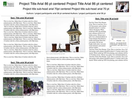 Project Title Arial 86 pt centered Project title sub-head arial 70pt centered Project title sub-head arial 70 pt Authors / project participants arial 56.