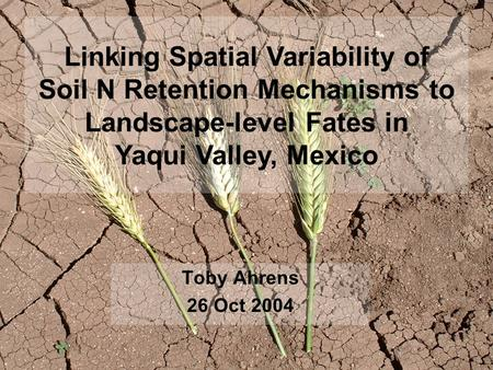 Toby Ahrens 26 Oct 2004 Linking Spatial Variability of Soil N Retention Mechanisms to Landscape-level Fates in Yaqui Valley, Mexico.
