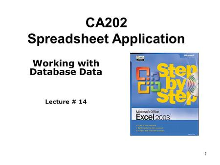 1 CA202 Spreadsheet Application Working with Database Data Lecture # 14.
