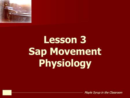 Maple Syrup in the Classroom Lesson 3 Sap Movement Physiology.