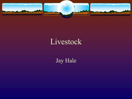 Livestock Jay Hale.  Objectives:  1. To understand and to interpret the value of performance data based on industry standards.  2. To measure the students'