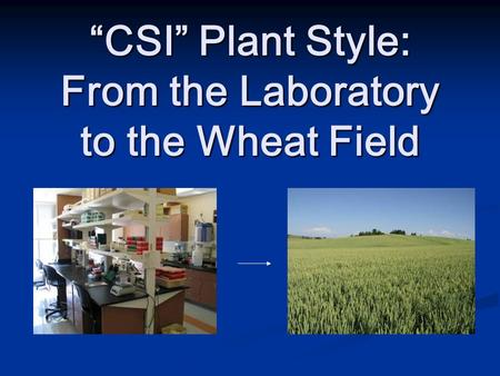"""CSI"" Plant Style: From the Laboratory to the Wheat Field."