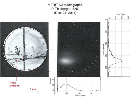 MERIT Autoradiographs P. Thieberger, BNL (Dec. 21, 2011)