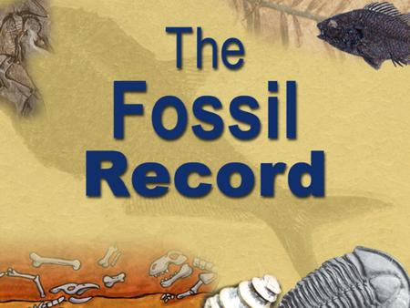 "Topics  Two worldviews  The fossil record The Cambrian explosion The Cambrian explosion Famous ""transitions"" used to support evolution Famous ""transitions"""