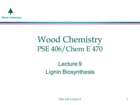 Wood Chemistry PSE 406 Lecture 91 Wood Chemistry PSE 406/Chem E 470 Lecture 9 Lignin Biosynthesis.