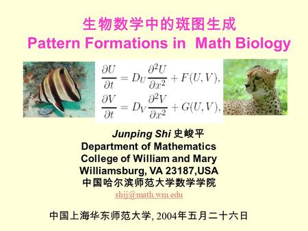 生物数学中的斑图生成 Pattern Formations in Math Biology Junping Shi 史峻平 Department of Mathematics College of William and Mary Williamsburg, VA 23187,USA 中国哈尔滨师范大学数学学院.