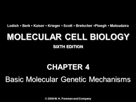MOLECULAR CELL BIOLOGY SIXTH EDITION MOLECULAR CELL BIOLOGY SIXTH EDITION Copyright 2008 © W. H. Freeman and Company CHAPTER 4 Basic Molecular Genetic.
