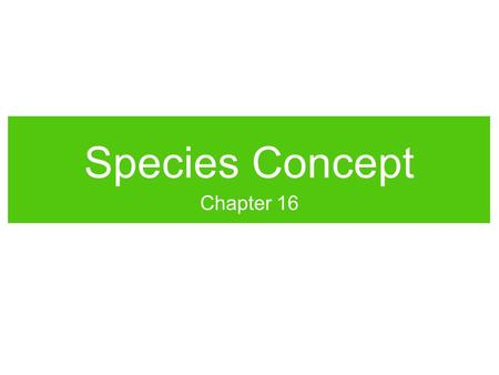"Species Concept Chapter 16. DAILYWORKDAILYWORK Write down your best definition of a ""species."" Include any characteristics that scientists might use to."