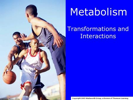 Metabolism Transformations and Interactions Copyright 2005 Wadsworth Group, a division of Thomson Learning.