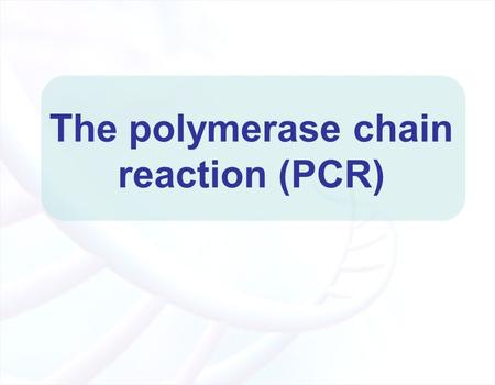 The polymerase chain reaction (PCR). Experiment Goals Understand how PCR technique works Perform PCR experiment Analyze PCR products.