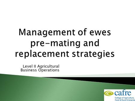 Level II Agricultural Business Operations.  Overview of the production cycle of a ewe  Appropriate management of the flock pre mating to achieve optimum.