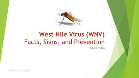 West Nile Virus (WNV) Facts, Signs, and Prevention Patrick Zelko Lab 1-2 West Nile Virus Patrick Zelko.