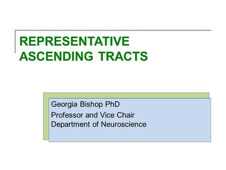 REPRESENTATIVE ASCENDING TRACTS Georgia Bishop PhD Professor and Vice Chair Department of Neuroscience.