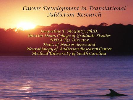 Career Development in Translational Addiction Research