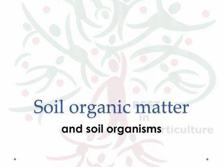 Soil organic matter and soil organisms. Soil biomass (living organic matter) = living plants and animals and micro-organisms.