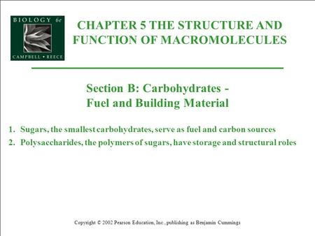 CHAPTER 5 THE STRUCTURE AND FUNCTION OF MACROMOLECULES Copyright © 2002 Pearson Education, Inc., publishing as Benjamin Cummings Section B: Carbohydrates.