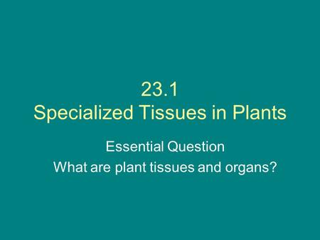 23.1 Specialized Tissues in Plants Essential Question What are plant tissues and organs?