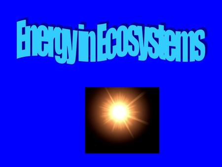 Energy in Ecosystems.