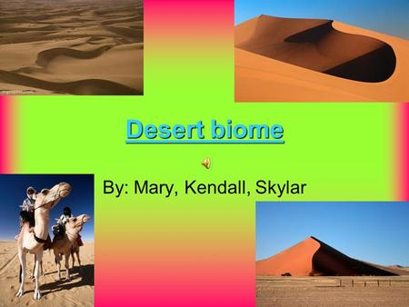 Desert biome By: Mary, Kendall, Skylar location In North America there are 4 main deserts; Chihuahuan Sonora Mojave Great Basin.