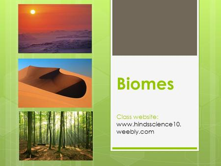 Biomes Class website:  weebly.com