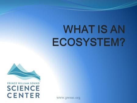 WHAT IS AN ECOSYSTEM? www.pwssc.org. What is an ecosystem? A community that includes all living and nonliving things in a certain area. Abiotic: All the.