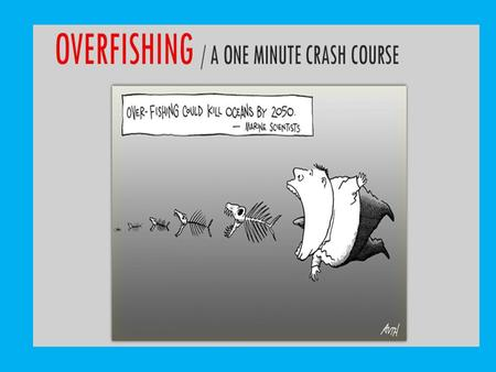 OVERFISHING The practice of commercial and non-commercial fishing which depletes a fishery by catching so many adult fish that not enough remain.