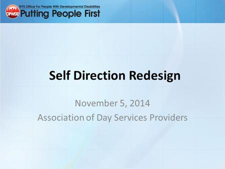 Self Direction Redesign November 5, 2014 Association of Day Services Providers.