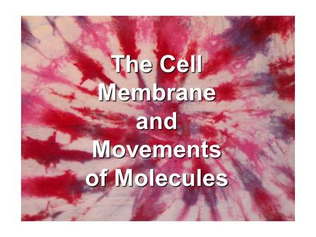 The Cell Membrane and Movements of Molecules The Plasma Membrane The Plasma Membrane (aka cell membrane)   Boundary- protect and support   Controls.