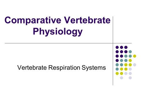 Comparative Vertebrate Physiology Vertebrate Respiration Systems.