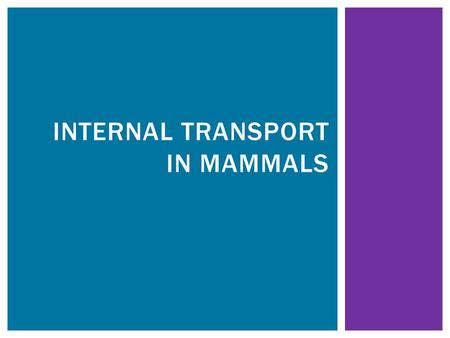 INTERNAL TRANSPORT IN MAMMALS.  Supplies all cells with the nutrients (eg. Glucose, mineral ions, amino acids), water and oxygen they require. INTERNAL.