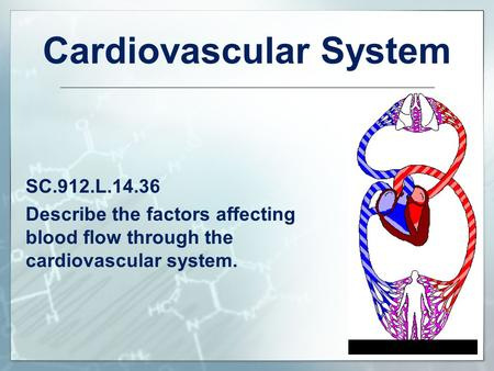 Cardiovascular System SC.912.L.14.36 Describe the factors affecting blood flow through the cardiovascular system.