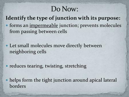 Identify the type of junction with its purpose: forms an impermeable junction; prevents molecules from passing between cells Let small molecules move directly.