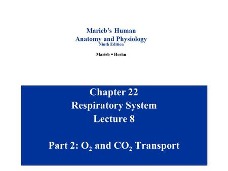Chapter 22 Respiratory System Lecture 8 Part 2: O2 and CO2 Transport