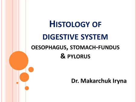 H ISTOLOGY OF DIGESTIVE SYSTEM OESOPHAGUS, STOMACH - FUNDUS & PYLORUS Dr. Makarchuk Iryna.