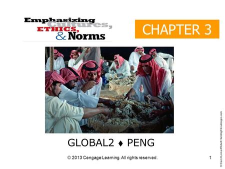 © 2013 Cengage Learning. All rights reserved. CHAPTER 3 GLOBAL2  PENG © David Lomax/Robert Harding/Glowimages.com 1.