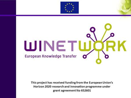 This project has received funding from the European Union's Horizon 2020 research and innovation programme under grant agreement No 652601.