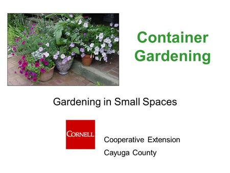 Container Gardening Gardening in Small Spaces Cooperative Extension Cayuga County.