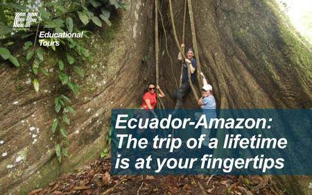 Ecuador-Amazon: The trip of a lifetime is at your fingertips.