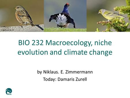 Vogelwarte.ch BIO 232 Macroecology, niche evolution and climate change by Niklaus. E. Zimmermann Today: Damaris Zurell.