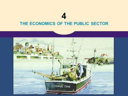 THE ECONOMICS OF THE PUBLIC SECTOR